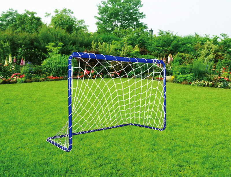 FSD-Metal-goal-2-(mini)